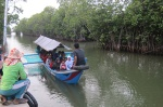 Mangroves can Help Develop Ecotourism: Minister